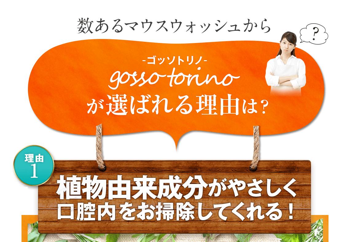 数あるマウスウォッシュからgosso torino(ゴッソトリノ)が選ばれる理由は?